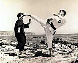 image for Do martial artists have to register as weapons?